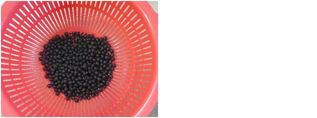 黒千石大豆を水で洗う